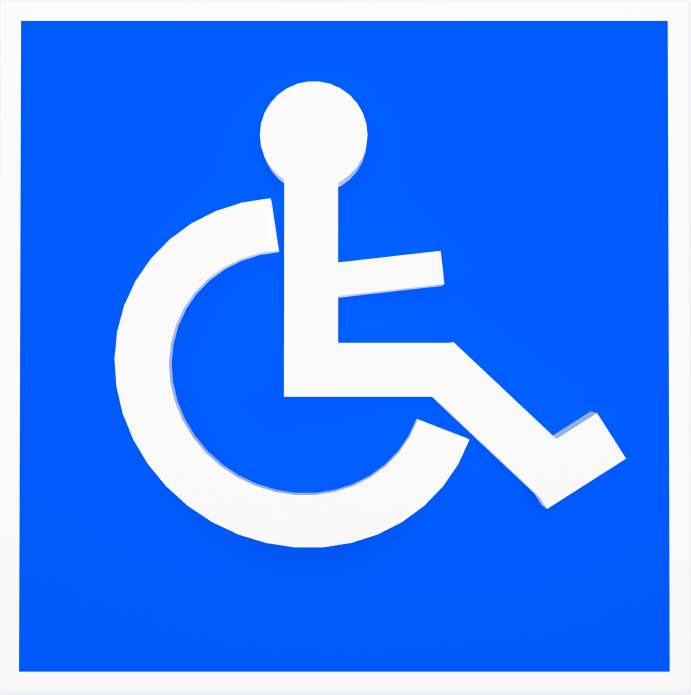 Security and Safety: Recognizing the Needs of People with Disabilities